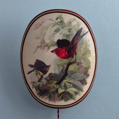 Wandleuchte Birds&Butterflies von Servomuto jetzt online kaufen
